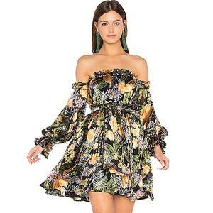 🍋 For Love & Lemons Luciana Straples Dress Floral